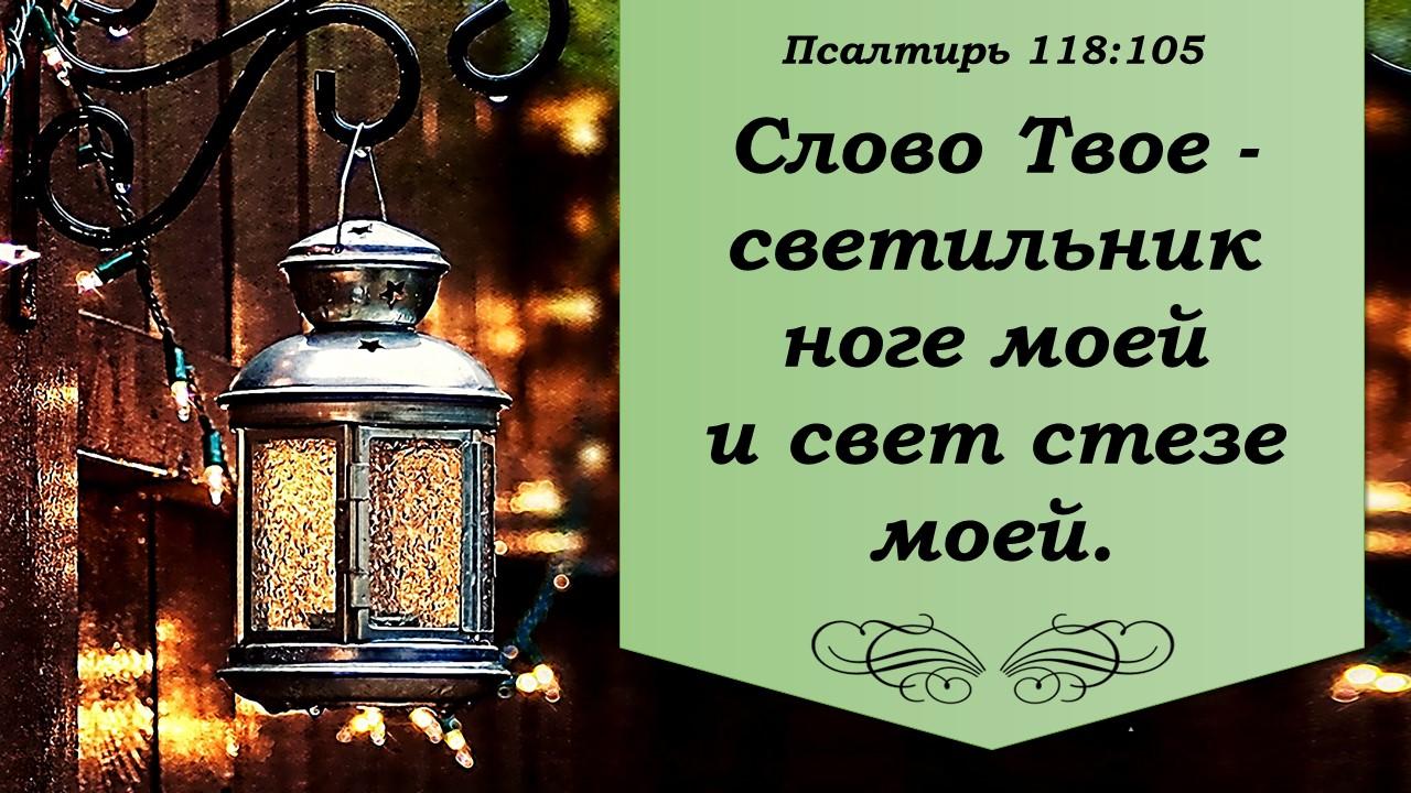 инструкции слово твое есть светильник картинки сорт дерева, листья